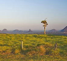Glasshouse Mountains by AdamDonnelly