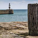 Seaham Harbour Lighthouse by David Lewins