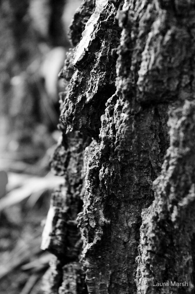 Bark I by Laura Marsh