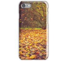 Autumn leaves and shrub iPhone Case/Skin