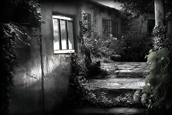 Softening the edges of decay by Sharon Bishop