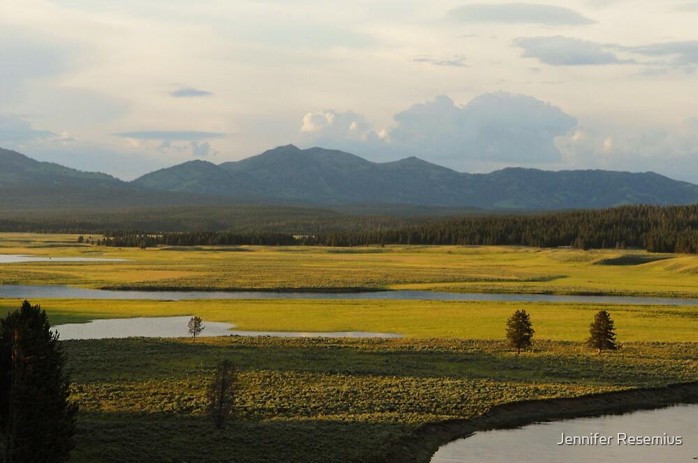 Sunshine Meadow by Jennifer Resemius
