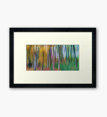 Autumnal Transition Framed Print