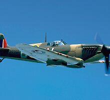Supermarine Spitfire IIa P7350/QV-B by Colin Smedley