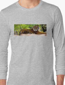 Lounging Tiger - Cool Stuff Long Sleeve T-Shirt