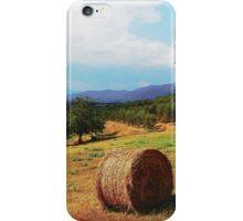 Golden fields iPhone Case/Skin