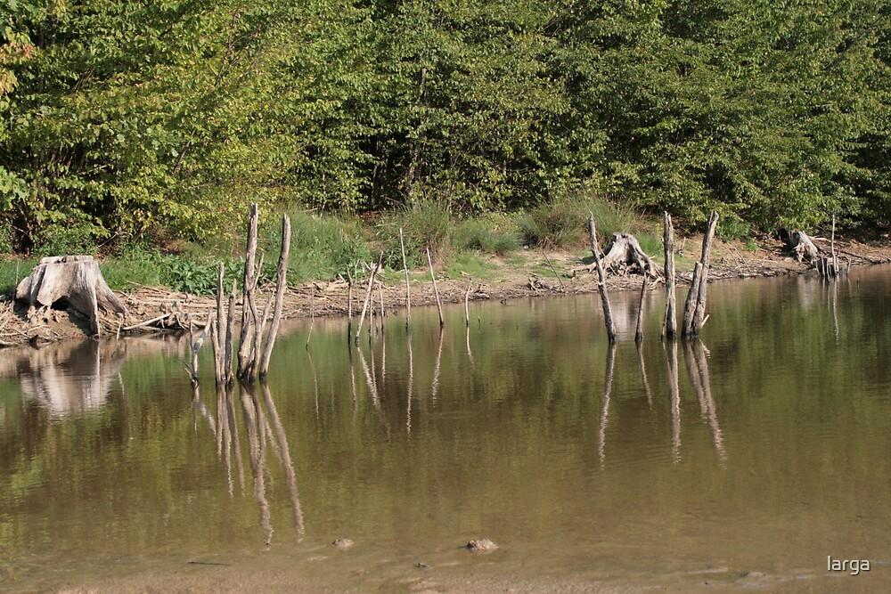 water blur... by larga