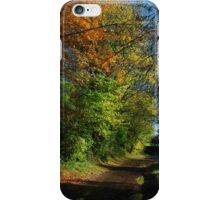 Autumn, a lane in West Burton. iPhone Case/Skin