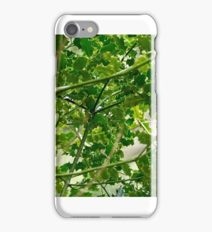 Green Spikes iPhone Case/Skin