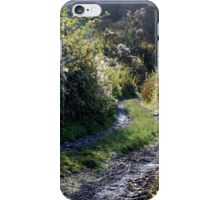 The old sunken lane. iPhone Case/Skin
