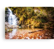 Autumn waterfall at Navarre in Spain Canvas Print