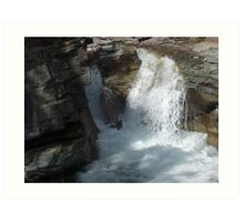 Gorge Water Fall 11 Art Print