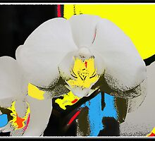 Orchid Abstract by Valli  aka Frankiesgirl