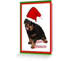 Happy Holidays Rottweiler Christmas Greetings Greeting Card