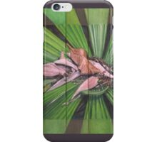 Fantail Palm Plateau (detail section) iPhone Case/Skin