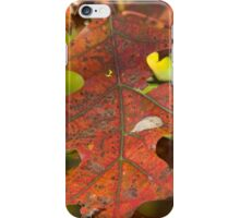 Last call on the Maple  Leaf iPhone Case/Skin