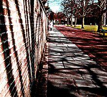 shadow path by Jess Beeton
