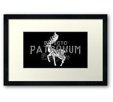 Harry Potter - Expecto Patronum Framed Print