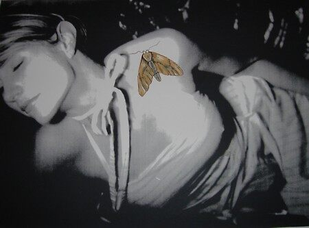 Old Hollywood Moth by Chad  Schuety