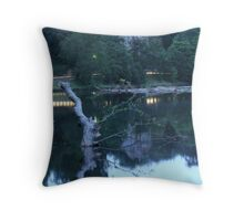 The Calm After The Storm Throw Pillow