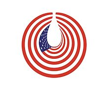 American Flag, Stars & Stripes, USA, In Circle by TOM HILL - Designer