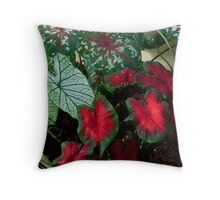 Caladiums Throw Pillow