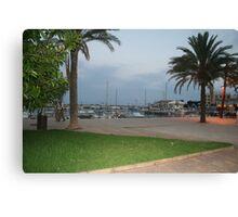 Cala Bona Harbour Canvas Print