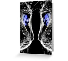 Blue Eyed Cat Greeting Card