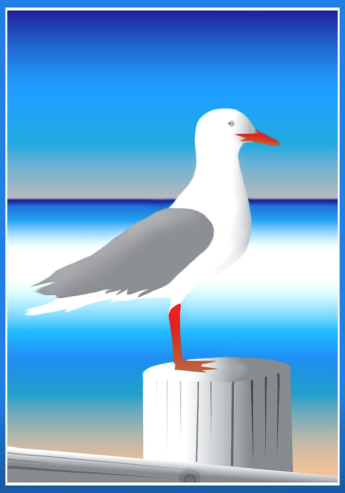 Seagull by Cliff Vestergaard