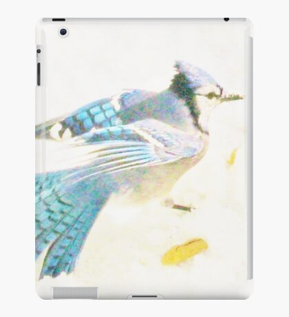 The Snow Storm ~ Blue On White iPad Case/Skin