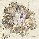 Gold Leaf by Leigh Ann Pobiak