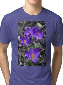 Group of Deep Purple Crocus Tri-blend T-Shirt