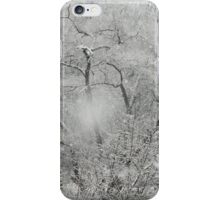 Winter's Contrasts Of Light iPhone Case/Skin