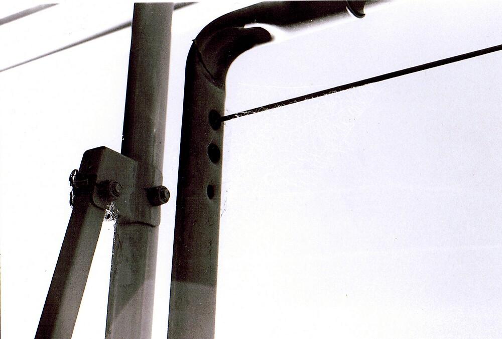 wire by lauren lederman