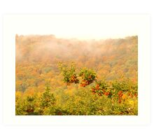 Autumn Apples Art Print