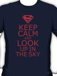 It's A Bird! It's A Plane! T-Shirt