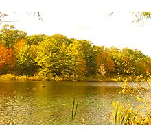 Colors of Autumn Reflected Photographic Print