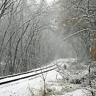 Tracks Into The Snow Storm by Geno Rugh