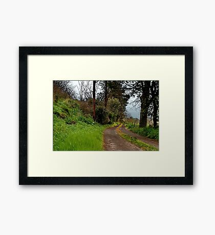"""The Driveway"" Framed Print"