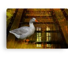 Goosy Goosy Gander Whither shall I wander Canvas Print