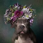 Flower Power, Tater Tot by Sophie Gamand