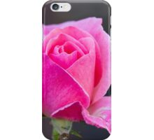 roses in the garden iPhone Case/Skin