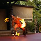 Fire Dancer by wolfllink