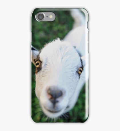 Precious Kid Goat iPhone Case/Skin