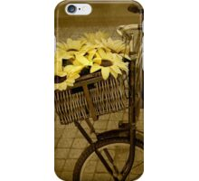 Bicycle In Vintage... Captured as still life in a public garden. Free State, South Africa iPhone Case/Skin