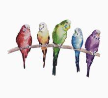 Rainbow budgie birds T-Shirt