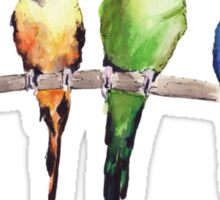 Rainbow budgie birds Sticker