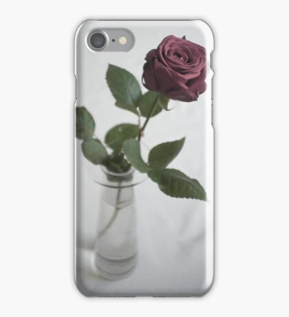 Single rose iPhone Case/Skin