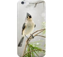 Snowy Songbird iPhone Case/Skin