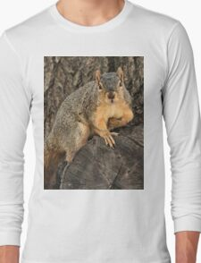 This is my Napoleon impression! Long Sleeve T-Shirt